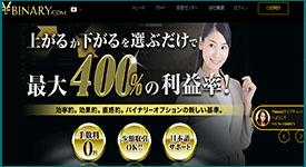 Ybinary(ワイバイナリー)